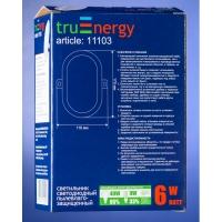 Светильник  пылевлагозащищенный  светодиодный 6 Вт  овальный Truenergy 11101